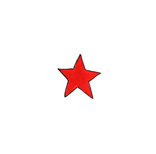 VIVALAVISITOR-star